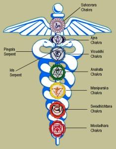 les chakras sont liés entre eux via la kundalini