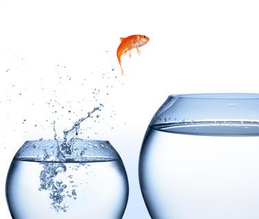il ne suffit pas de réfléchir, il faut agir pour évoluer